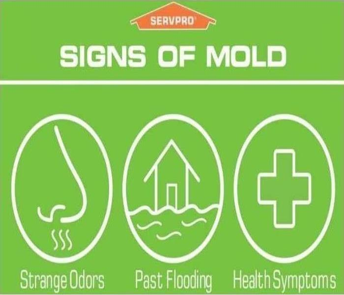 signs of mold